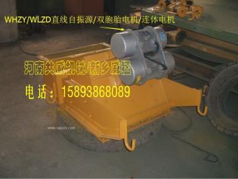 双胞胎振动电机WHZY-2*17-4