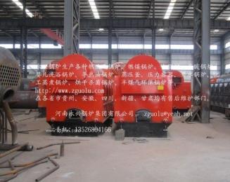 贵州燃煤蒸汽13公斤压力蒸汽锅炉