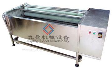 广州九盈供应JYTP-1800土豆清洗脱皮机,洗姜机,番薯马蹄萝卜清洗机