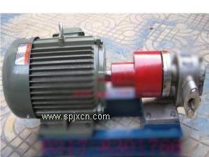 磁力驱动的不锈钢保温齿轮泵