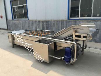 厂家供应蔬菜清洗机/蔬菜加工设备
