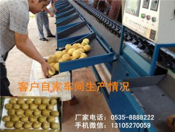 柠檬分果机生产厂家