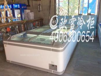 东莞松山湖大型超市低温组合岛柜