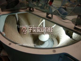 全自動種子丸粒化包衣機