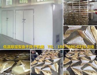 海鱼烘干机  低温除湿型海鱼风干机  海鱼烘干设备