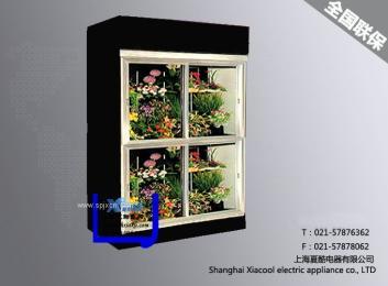 上海夏酷风幕柜,冷藏柜,鲜花柜,保鲜柜