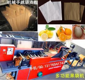 新型双层柠檬果袋机制药袋机