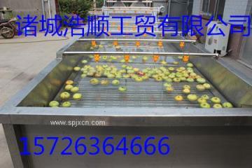 苹果清洗机 臭氧消毒清洗机 果蔬清洗设备