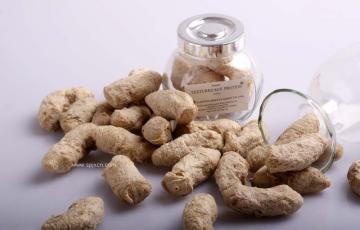 拉丝大豆蛋白设备