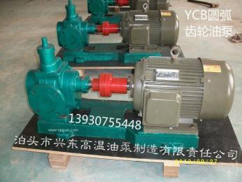 滤油机圆弧泵