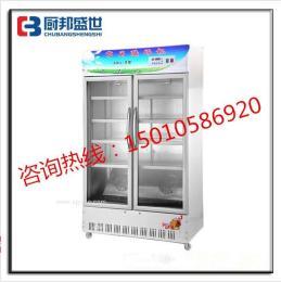 立式双门酸奶机器|小型酸奶吧设备|发酵酸奶的机器|全自动商用酸奶机