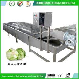 蔬菜水產品氣泡清洗機
