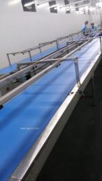 蓝色PU食品输送带输送机
