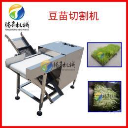 供应 不锈钢菜苗收割机 豆苗切菜机 全自动豆芽去根机 厂家研发