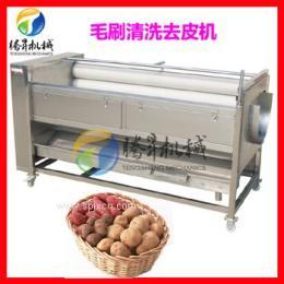廠家直銷自動洗菜機 毛刷清洗脫皮機 果蔬活氧殺菌去皮清洗機