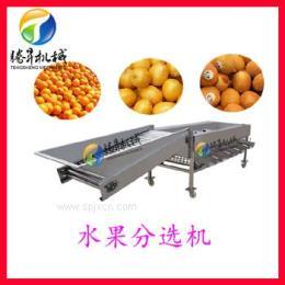 不锈钢水果分级机 苹果选果机 多功能水果分级机 分择机