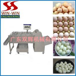 DC-8000鸡蛋剥壳机