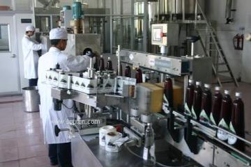 6000瓶果汁饮料生产线机械|果味饮料全套设备