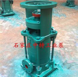 50 LG*2立式管道泵, 扬程40米流量24