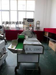 武汉RL-806全不锈钢大型切菜机