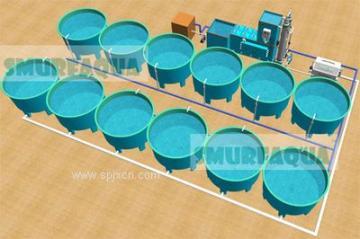 渔悦工厂循环水养殖系统 循环水养鱼 工程设计安装与维护