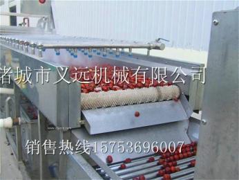 气泡清洗机 果蔬加工设备 野菜清洗机 水果清洗机