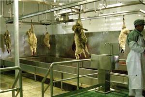 和义HY供应屠宰设备流水线 羊沥血输送线