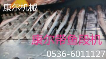 康尔链条式带鱼切段机供应