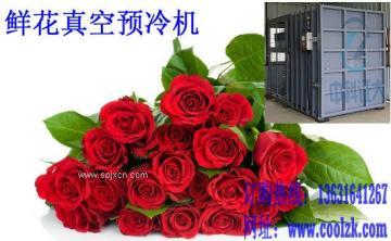 专业供应 鲜花保鲜设备 花卉真空预冷保鲜机