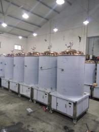 廠家直銷自釀啤酒設備 扎啤機 精釀啤酒設備
