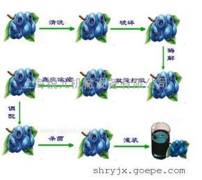 自产自销大输液制剂成套设备 果汁饮料生产线