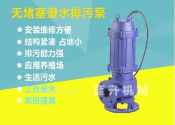 济南生产蓝升牌调节池污水提升泵加工厂