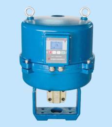 3810L(3810R)电子式电动执行器