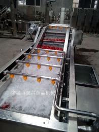 供应昊昌草莓清洗机、喷淋清洗机