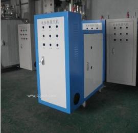 电容胶 电硫化 电加热蒸汽锅炉