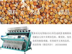 玉米色选机价格