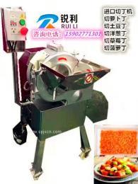供应台湾800果蔬切丁机,土豆红薯切方丁机,一次性水果切丁机