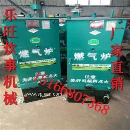 爆款定制河北乐旺蒸馒头锅炉 贵州小型立式加重蒸汽锅炉 做酒锅炉厂家