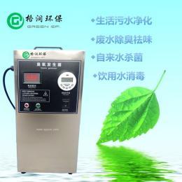 GR-CY-2G臭氧发生器