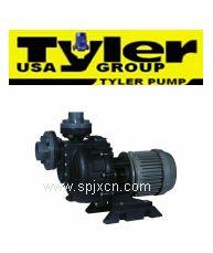 进口防腐真空泵 进口罗茨真空泵<美国TYLER系列>