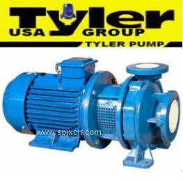 進口直聯式離心泵 進口共軸式離心泵<美國TYLER系列>