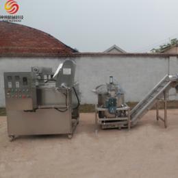 供应豆类 花生 坚果类油炸生产线 不锈钢制造