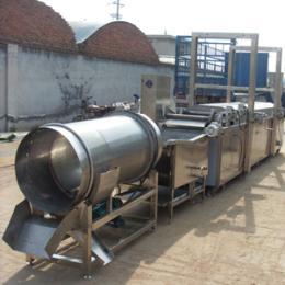厂家直销 江米条油炸生产线 连续式油炸设备