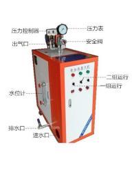 电加热蒸汽锅炉 电蒸汽发生器
