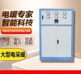 山东电采暖炉 大功率电采暖设备