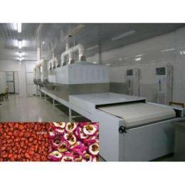 红枣杀菌设备