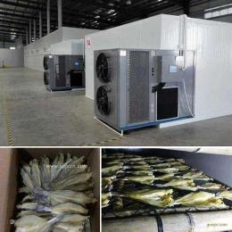林蛙油低溫干燥設備
