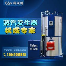 食品加工专用蒸汽发生器