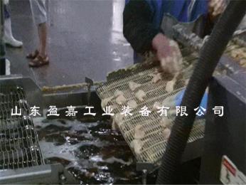 挂糊挂浆鸡块油炸机 产品图片