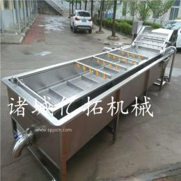 连续式水果清洗机